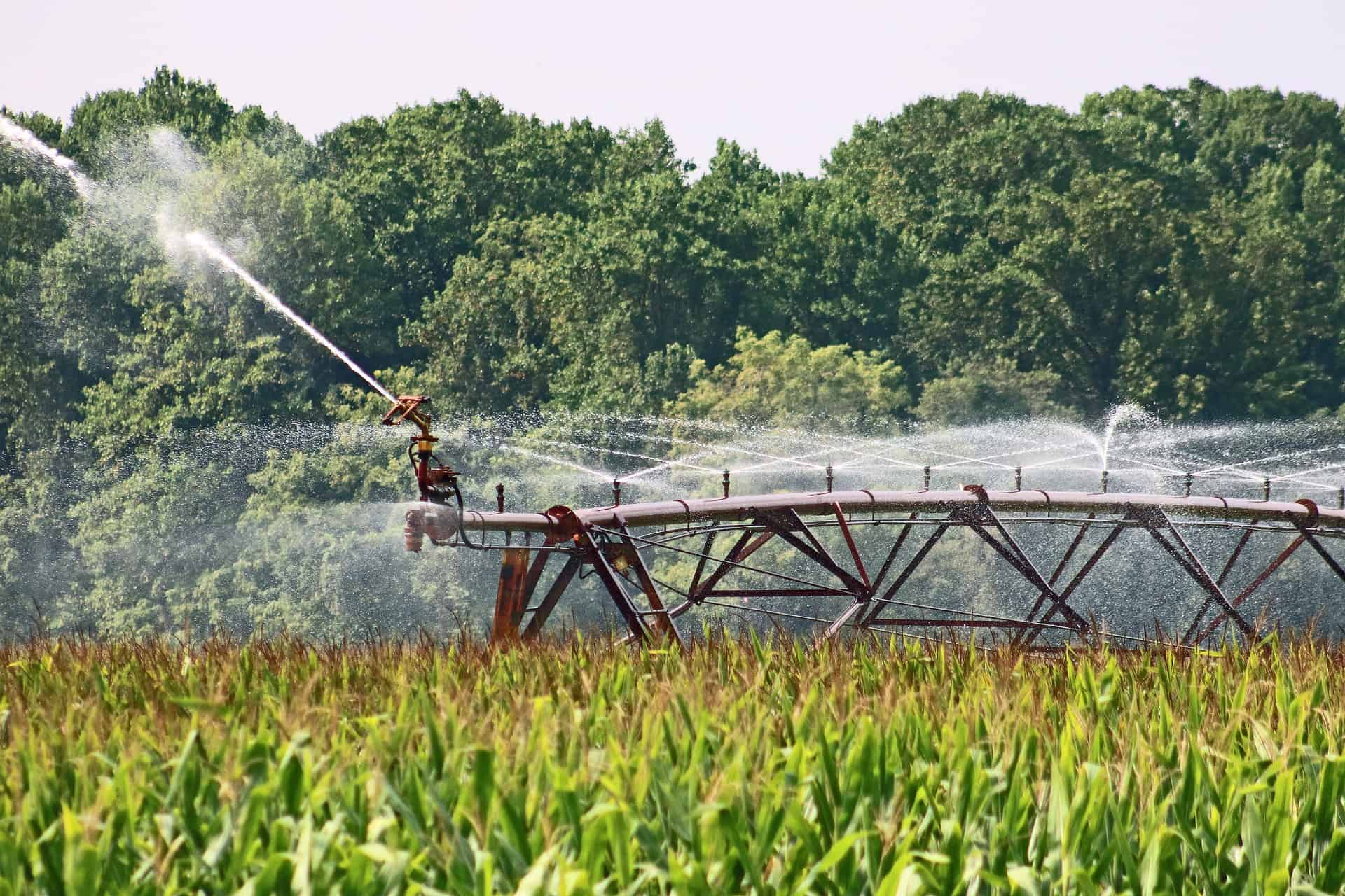 Read more about the article Agricultural Backbone, Irrigation Pumps